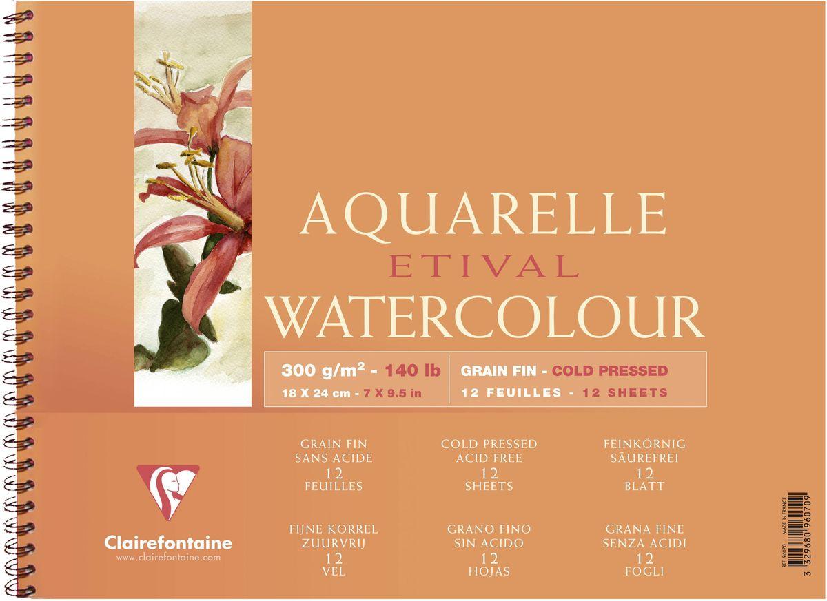 Альбом Clairefontaine  Etival , на спирали, 18 х 24 см, 12 листов -  Бумага и картон