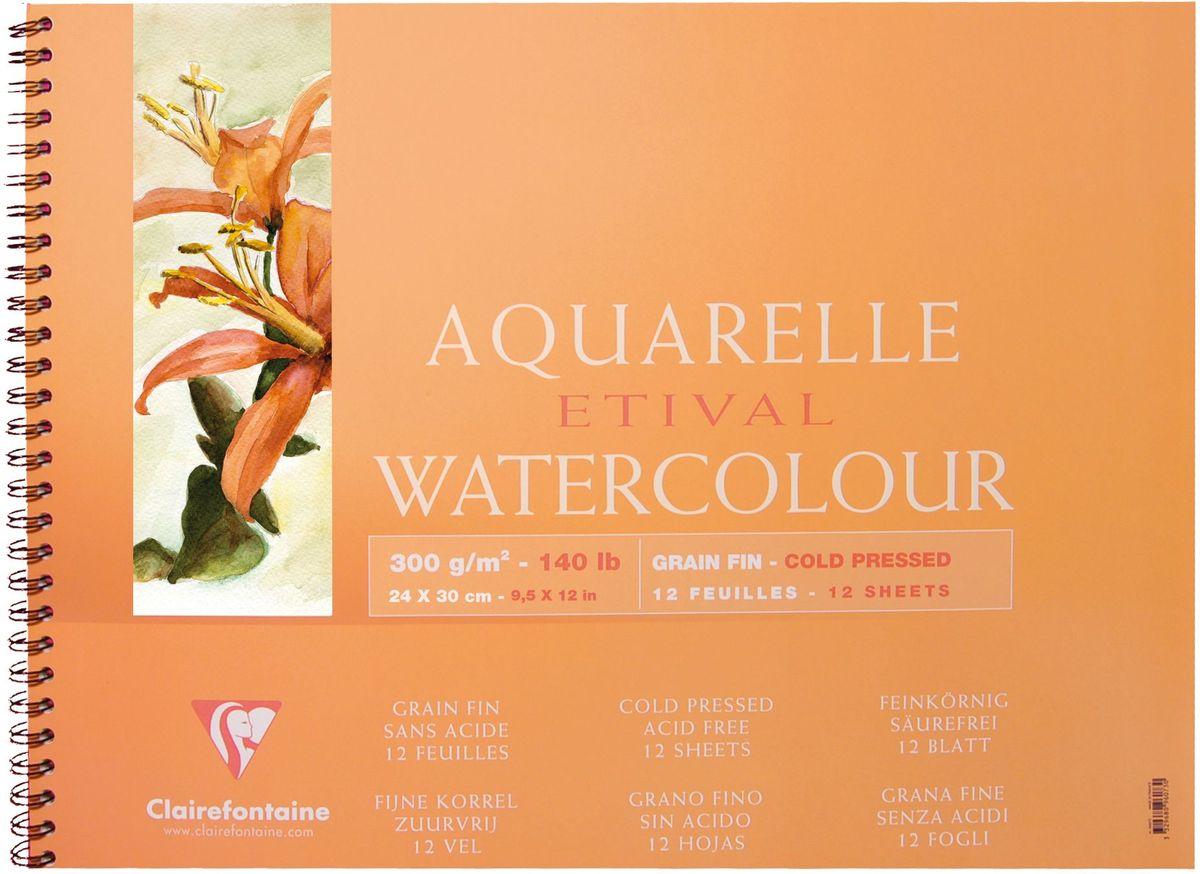 Альбом Clairefontaine  Etival , на спирали, 24 х 30 см, 12 листов -  Бумага и картон
