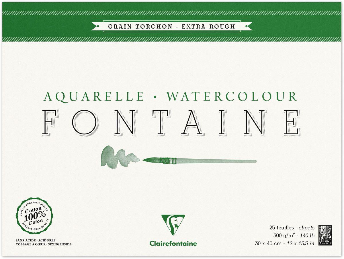 Альбом Clairefontaine  Fontaine , грубая техника, 30 х 40 см, 25 листов -  Бумага и картон