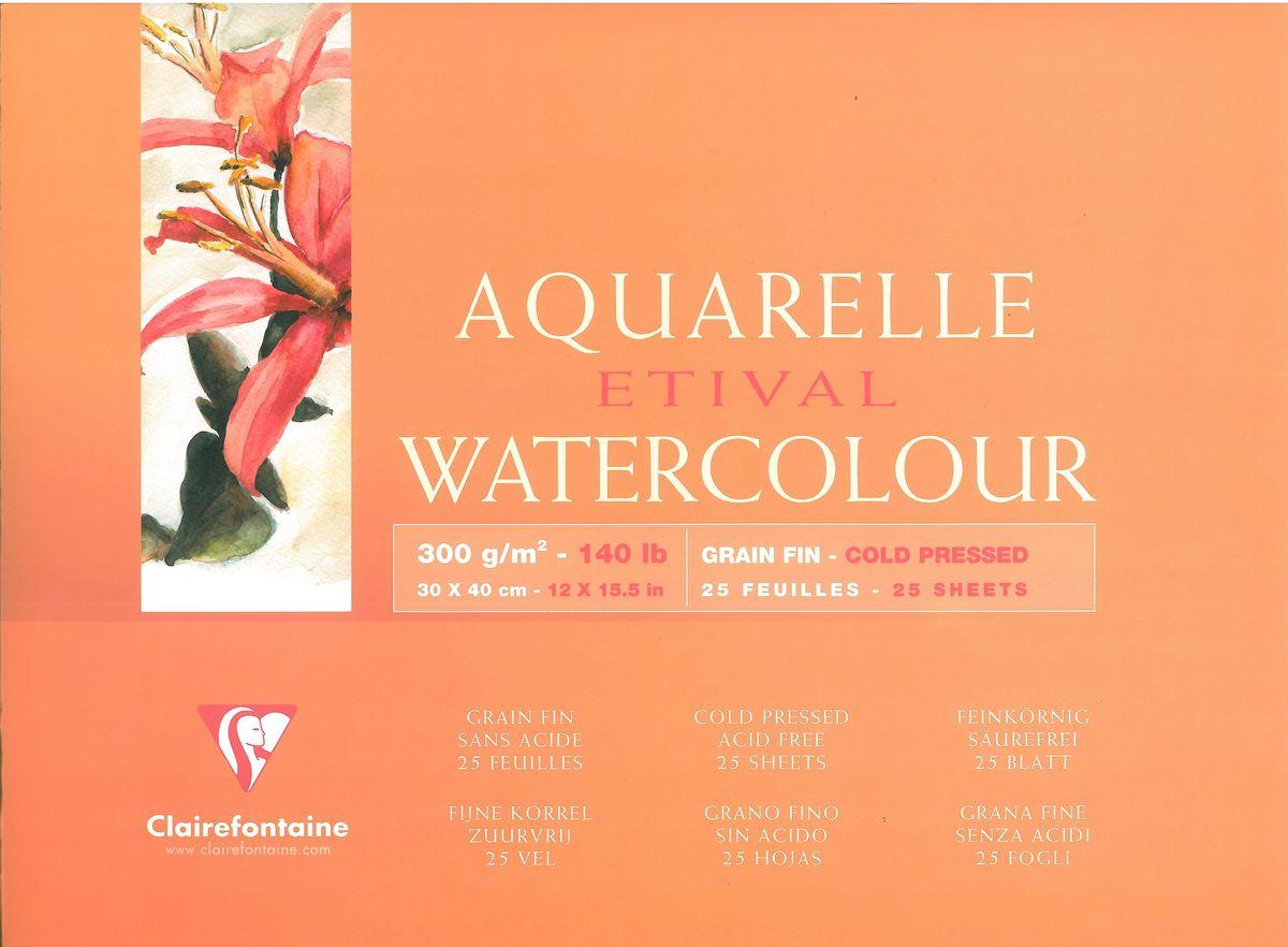 Альбом Clairefontaine  Etival , 30 х 40 см, 25 листов. 96472С -  Бумага и картон