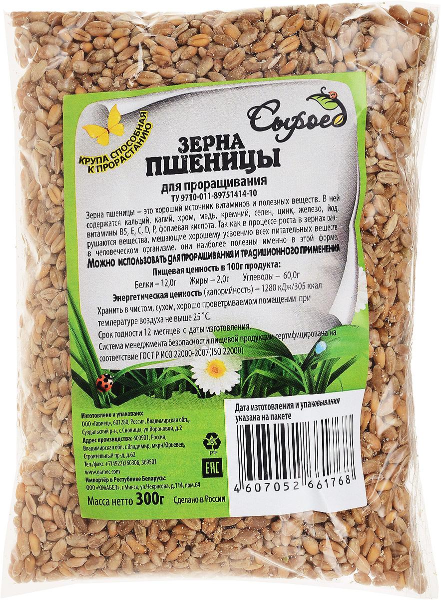 Гарнец Зерна для проращивания Пшеница, 300 г смесь гарнец для черемуховского торта 500г