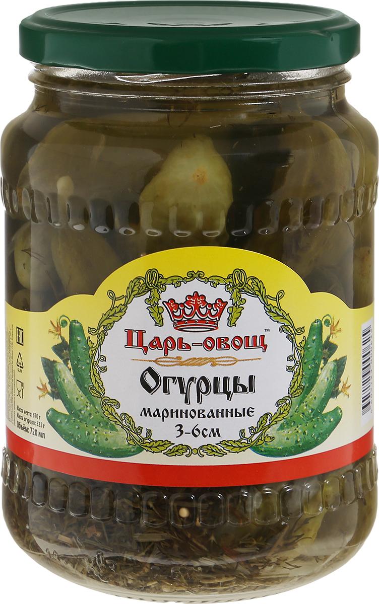 Царь-овощ Огурцы 3-6 см, 680 г рецептура 902 ту 6 05 1587 84