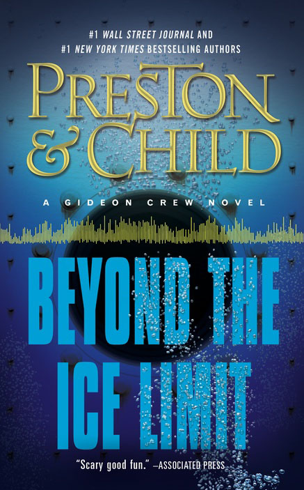Beyond the Ice Limit: A Gideon Crew Novel the lonely polygamist – a novel