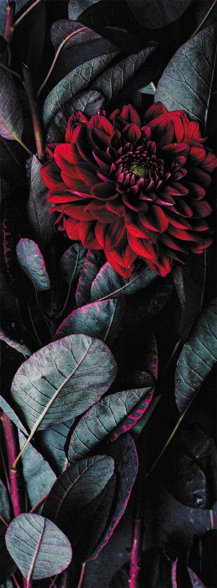Фотообои Milan Страсть, текстурные, 100 х 270 см. M 111