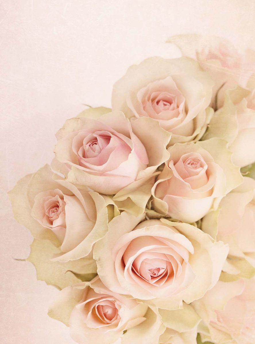 Фотообои Milan Розовое очарование, текстурные, 200 х 270 смm 201Фотообои Milan Розовое очарование позволят создать неповторимый облик помещения, в котором они размещены. Фотообои наносятся на стены тем же способом, что и обычные обои. Благодаря превосходной печати и высококачественной флизелиновой основе такие обои будут радовать вас долгое время. Фотообои снова вошли в нашу жизнь, став модным направлением декорирования интерьера. Выбрав правильную фактуру и сюжет изображения можно добиться невероятного эффекта живого присутствия.