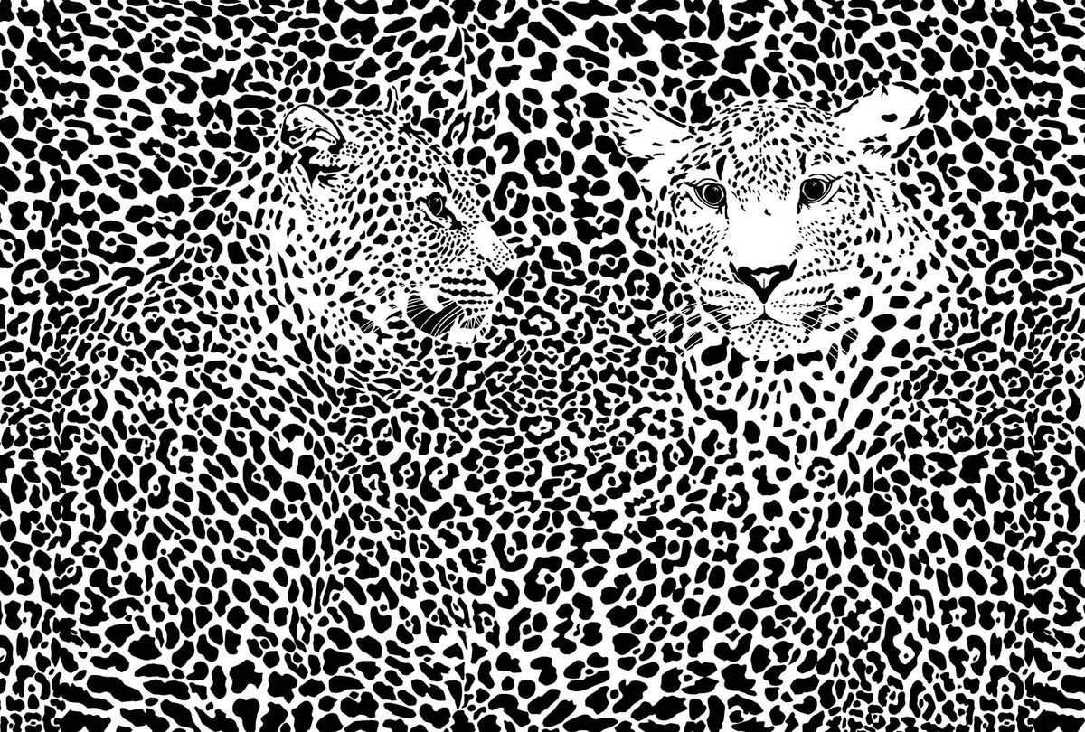 Фотообои Milan Черно-белые леопарды, текстурные, 400 х 270 см. M 404