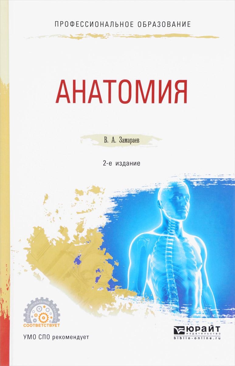 Анатомия. Учебное пособие