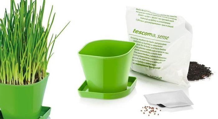 Набор для выращивания пряных растений Tescoma Sense. Зеленый Лук. 899062899062Набор для выращивания пряных растений Tescoma Sense. Зеленый Лук идеально подходит для выращивания трав в домашних условиях. Комплект включает в себя семена, органический субстрат и горшок сделанный из прочного пластика. Инструкция по применению внутри пакета.