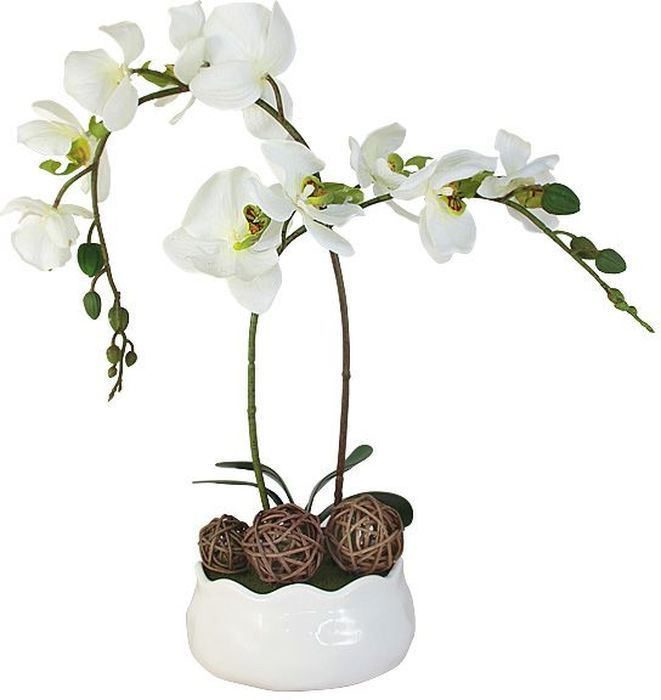 Декоративные цветы Dream Garden Орхидея белая, на подставке, 16х16х36см. DG-15009-FU-ALDG-15009-FU-ALДекор.цветы Орхидея белаяна керам подставке 16х16х36смТорговая марка Dream Garden, Китай.Композиции из искусственных цветов долговечны, не требуют ежедневного ухода, выполнены из натуральных шелка и текстиля, прошедших специальную обработку высококачественными современными материалами. Искусственные цветы максимально приближены к натуральным, не пахнут, что исключает все аллергические реакции.