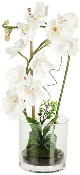 Декоративные цветы Dream Garden Орхидея белая, в вазе, 15х15х47,5см. DG-15015-ALDG-15015-ALДекор.цветы Орхидея белая в стекл.вазе15х15х47.5смТорговая марка Dream Garden, Китай.Композиции из искусственных цветов долговечны, не требуют ежедневного ухода, выполнены из натуральных шелка и текстиля, прошедших специальную обработку высококачественными современными материалами. Искусственные цветы максимально приближены к натуральным, не пахнут, что исключает все аллергические реакции.