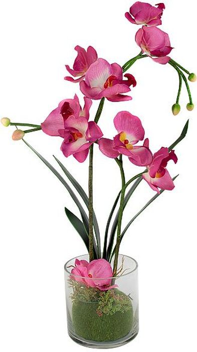 """Цветы декоративные Dream Garden """"Орхидея"""", в вазе, 34 х 12 х 50 см"""