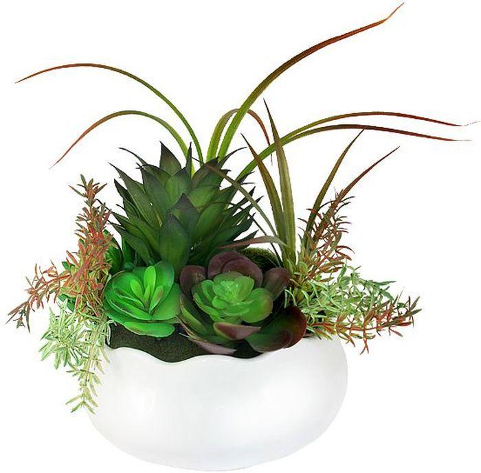 """Цветы декоративные Dream Garden """"Суккуленты"""", в вазе, 23 х 19 х 25 см"""
