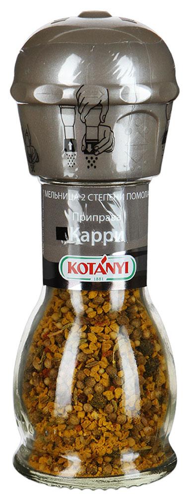 Kotanyi Приправа Карри, 45 г kotanyi приправа томаты & оливки 20 г