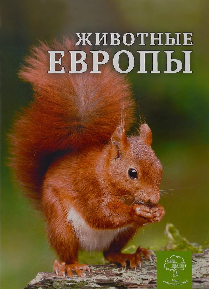 К. Павловская Животные Европы животные серия антистресс альбом