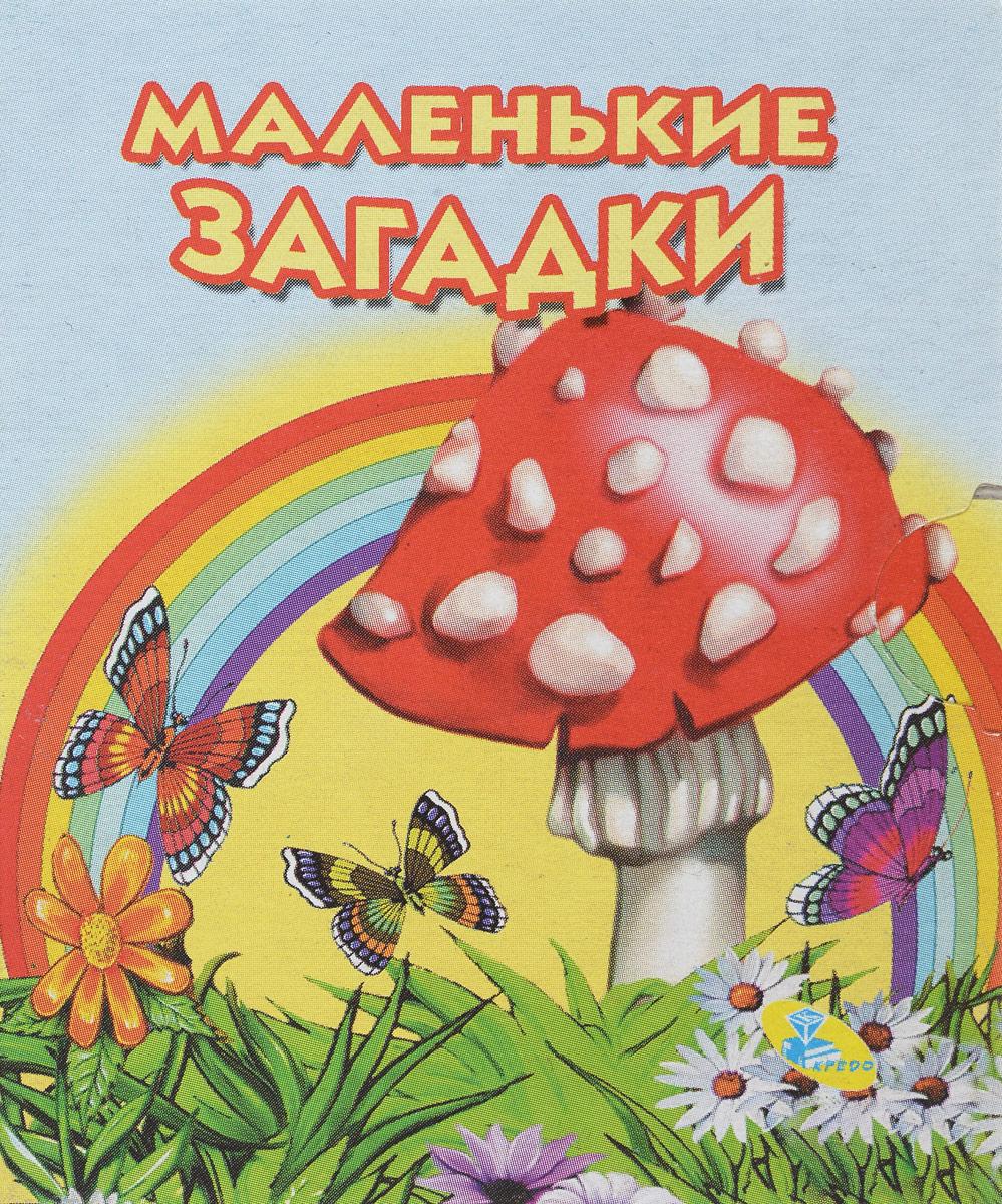 Маленькие загадки (миниатюрное издание) загадки для малышей