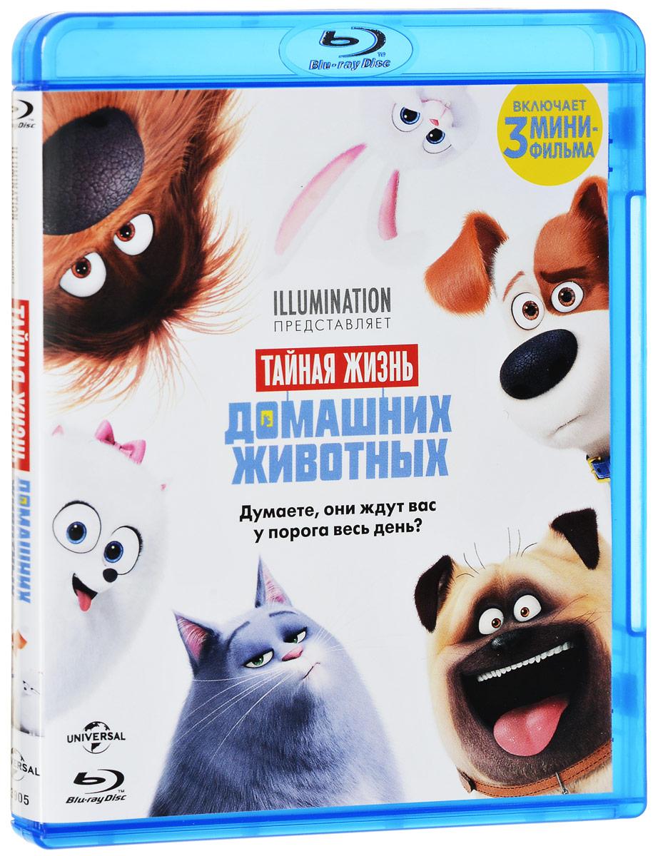 Тайная жизнь домашних животных (Blu-ray) кэти кевилль ароматерапия для чайников