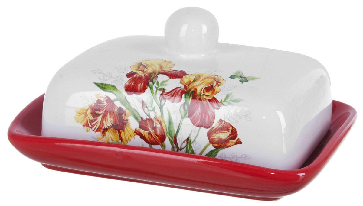 Масленка ENS Group Касатик. L2520650L2520650Масленка Касатик, изготовленная из керамики, предназначена для красивой сервировки и хранения масла. Она состоит из крышки с удобной ручкой и подноса. Масло в ней долго остается свежим, а при хранении в холодильнике не впитывает посторонние запахи. Гладкая поверхность обеспечивает легкую чистку.Можно мыть в посудомоечной машине.