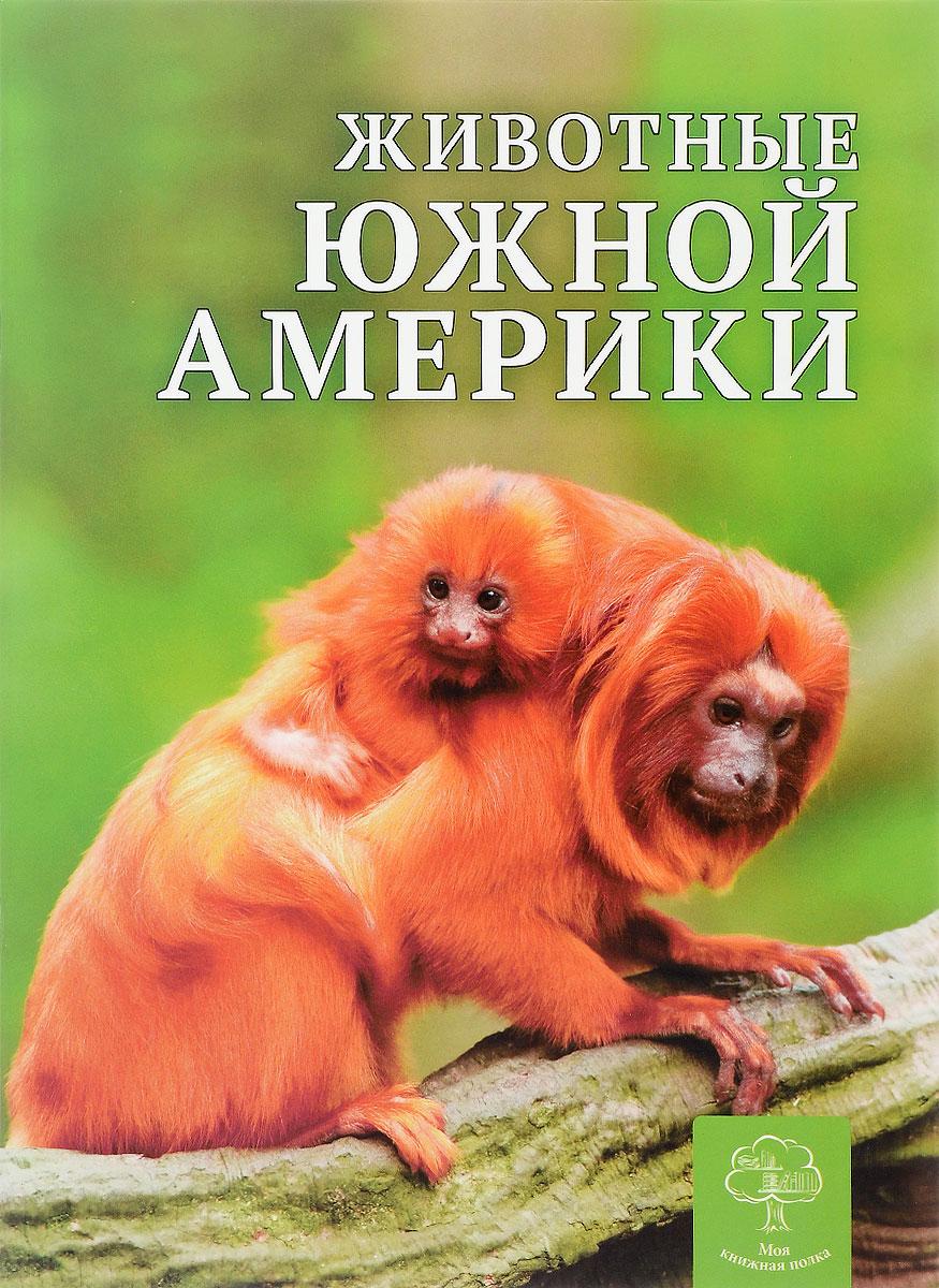 К. Павловская Животные Южной Америки