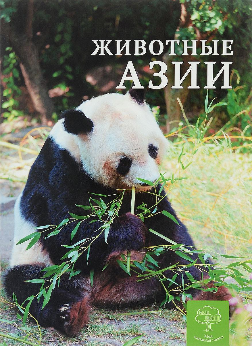 К. Павловская Животные Азии животные серия антистресс альбом