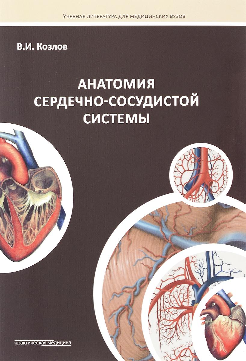 Анатомия сердечно-сосудистой системы. Учебное пособие