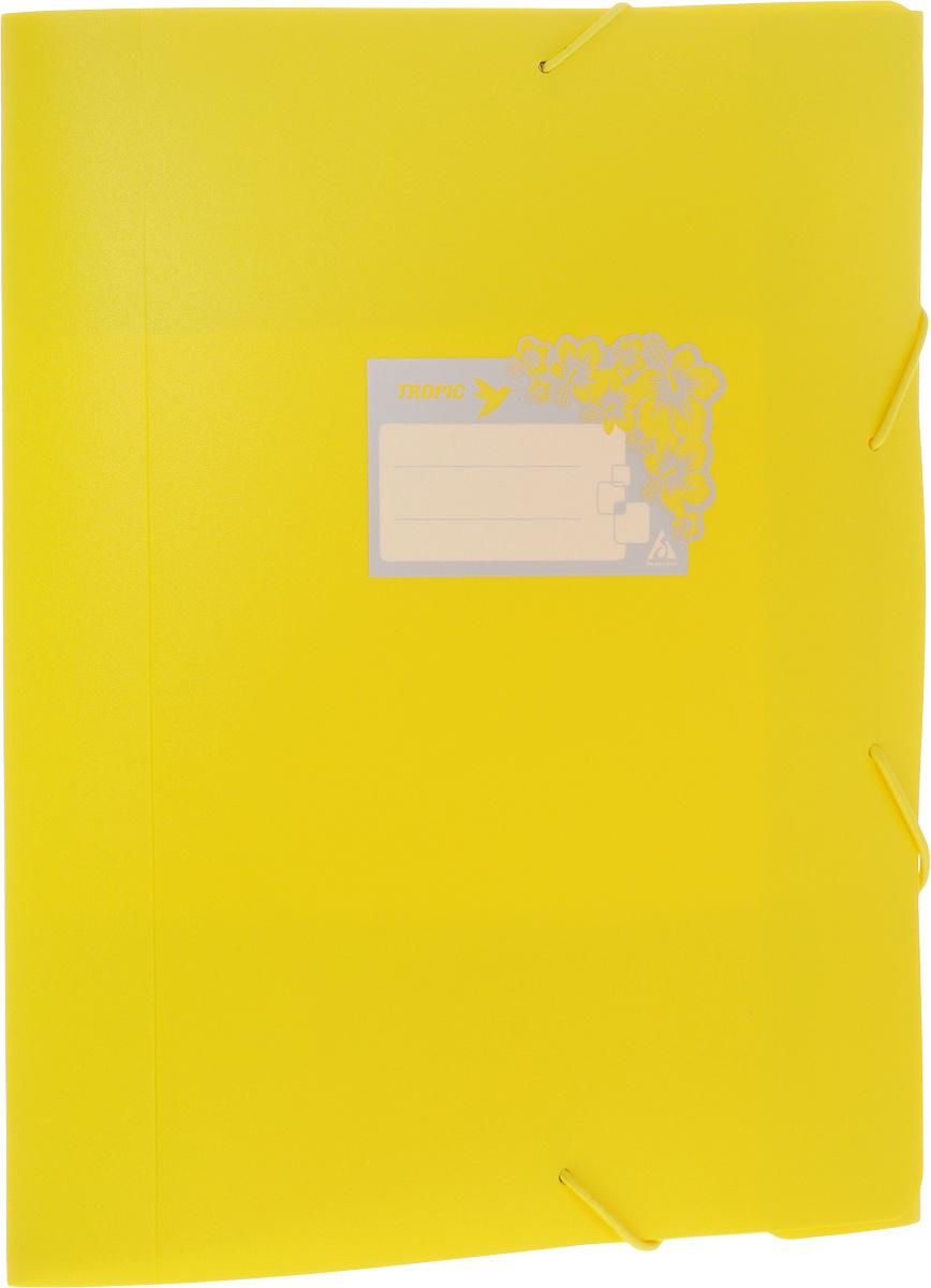 Бюрократ Папка-короб на резинке Tropic формат А4+ цвет желтый816252__желтыйПапка-короб на резинке Tropic - это удобный и функциональный офисный инструмент, предназначенный для хранения и транспортировки большого объема рабочих бумаг и документов формата А4+. На лицевой стороне папки имеется место для ФИО владельца, оформленное рисунком с тропическими цветами. Папка изготовлена из жесткого, но гибкого фактурного пластика и закрывается при помощи угловых резинок. Резинки не позволят папке раскрыться в неподходящий момент. Папка надежно сохранит ваши документы и сбережет их от повреждений, пыли и влаги.