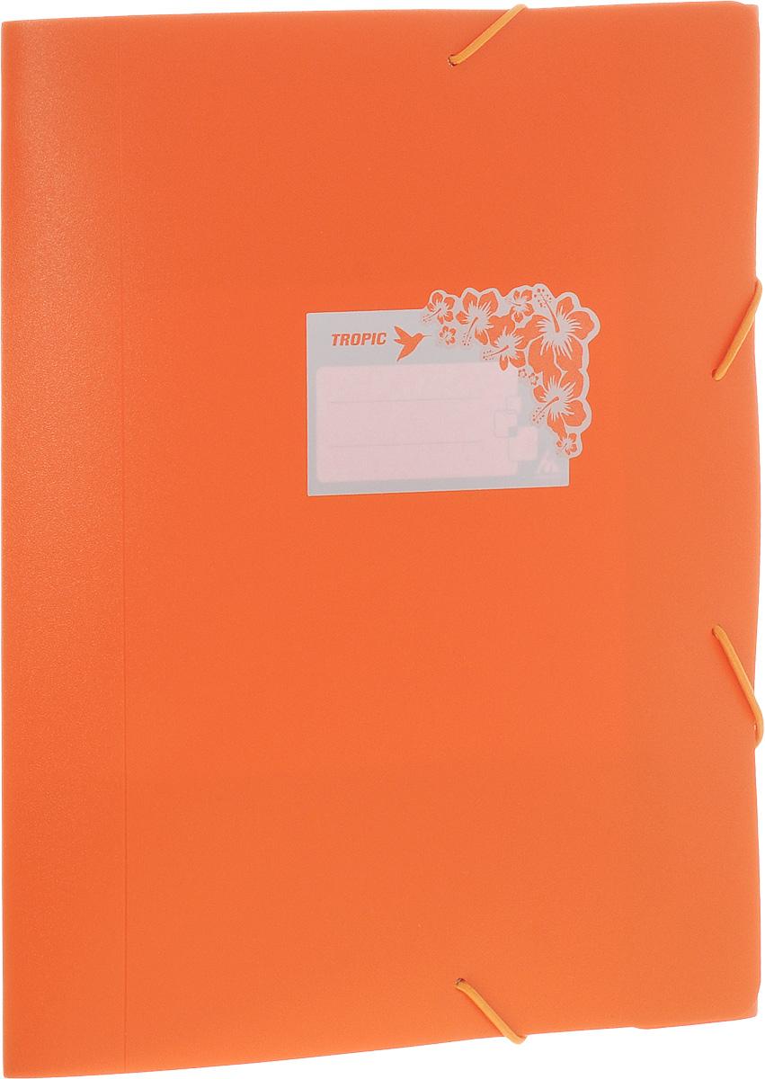Бюрократ Папка-короб на резинке Tropic формат А4+ цвет оранжевый816252__оранжевыйПапка-короб на резинке Tropic - это удобный и функциональный офисный инструмент, предназначенный для хранения и транспортировки большого объема рабочих бумаг и документов формата А4+.На лицевой стороне папки имеется место для ФИО владельца, оформленное рисунком с тропическими цветами. Папка изготовлена из жесткого, но гибкого фактурного пластика и закрывается при помощи угловых резинок. Резинки не позволят папке раскрыться в неподходящий момент.Папка надежно сохранит ваши документы и сбережет их от повреждений, пыли и влаги.