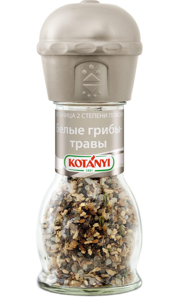 Kotanyi Белые грибы-травы, 42 г412211Изысканная смесь белых грибов и ароматных трав улучшит вкус мясных и овощных блюд, а также соусов, салатов и супов.Внимание! Может содержать следы глютеносодержащих злаков, яиц, сои, сельдерея, кунжута, орехов, молока (лактозы), горчицы.Уважаемые клиенты! Обращаем ваше внимание, что полный перечень состава продукта представлен на дополнительном изображении.