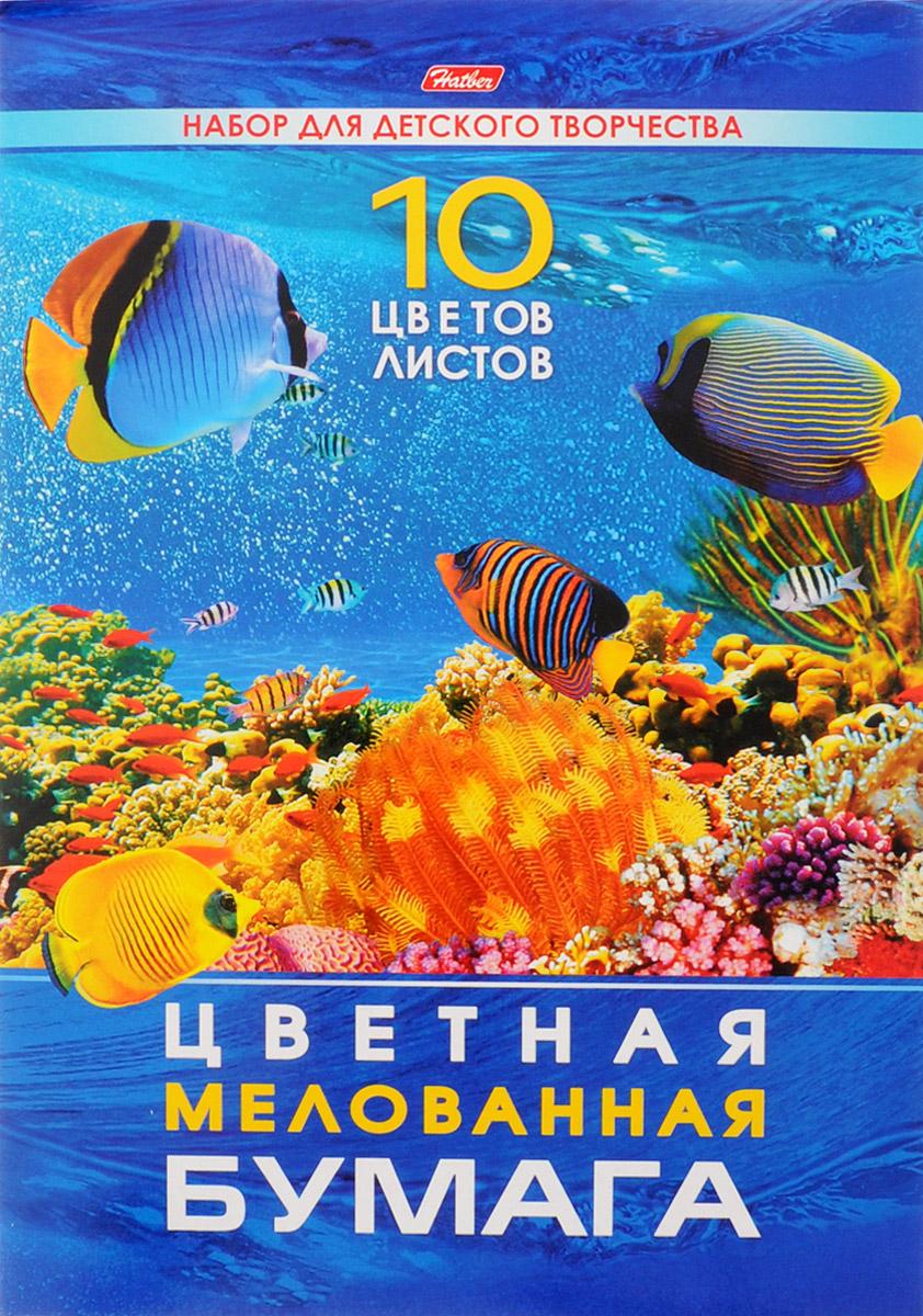 Hatber Набор цветной мелованной бумаги Подводный мир 10 листов набор для ванны подводный мир 55390