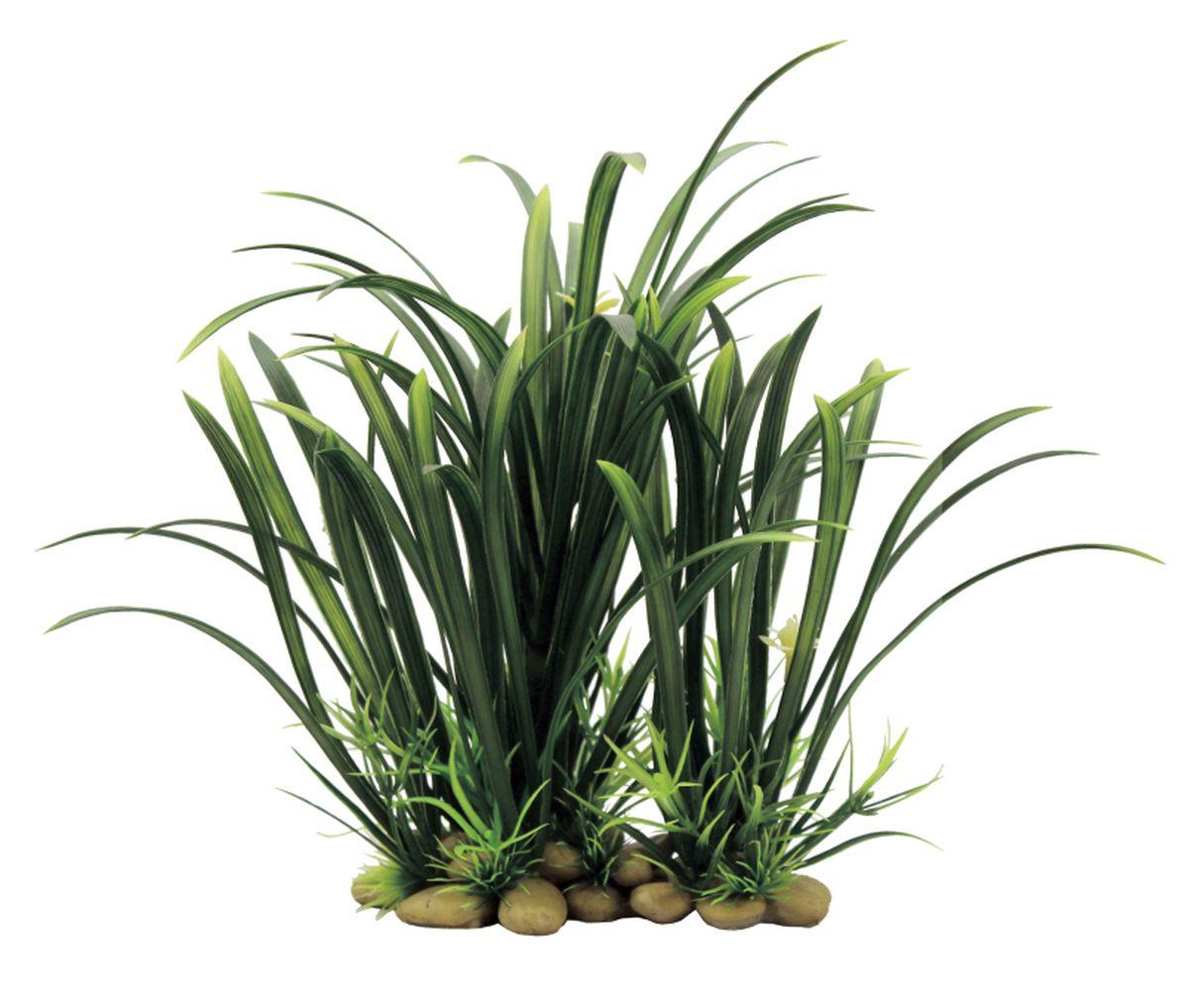Растение для аквариума ArtUniq Офиопогон, 21 x 16 x 8 смART-1130605Композиция из искусственных растений ArtUniq превосходно украсит и оживит аквариум.Растения - это важная часть любой композиции, они помогут вдохнуть жизнь в ландшафт любого аквариума или террариума. А их сходствос природными порадует даже самых взыскательных ценителей.