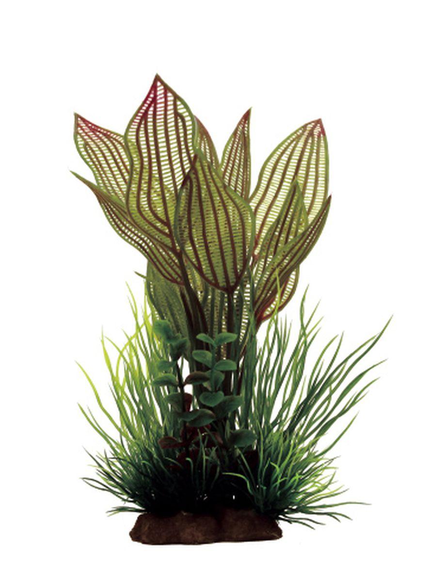 Композиция из растений для аквариума ArtUniq Апоногетон мадагаскарский красный, 12 x 10 x 18 см декорация для аквариума artuniq пористый камень 20 5 x 10 5 x 18 8 см