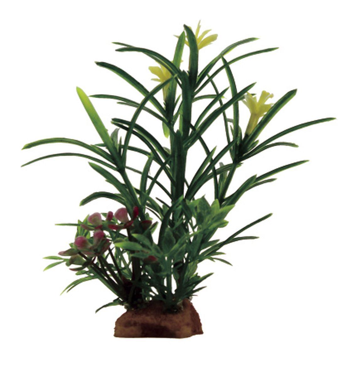 Композиция из растений для аквариума ArtUniq Эустералис, 8 x 7 x 14 смART-1130913Композиция из искусственных растений ArtUniq превосходно украсит и оживит аквариум.Растения - это важная часть любой композиции, они помогут вдохнуть жизнь в ландшафт любого аквариума или террариума. Композиция является точной копией природного растения.