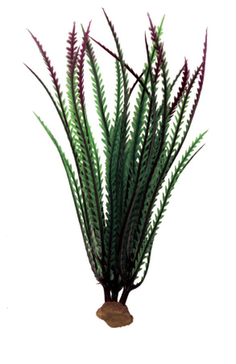 Растение для аквариума ArtUniq Гигрофила перистонадрезанная красно-зеленая, 6 x 6 x 23 смART-1140506Композиция из искусственных растений ArtUniq превосходно украсит и оживит аквариум.Растения - это важная часть любой композиции, они помогут вдохнуть жизнь в ландшафт любого аквариума или террариума. А их сходствос природными порадует даже самых взыскательных ценителей.