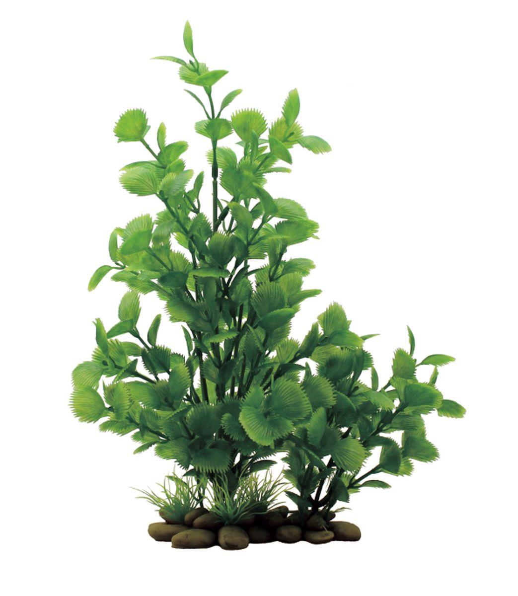 Растение для аквариума ArtUniq Ливистона , высота 30 смART-1150201Композиция из искусственных растений ArtUniq превосходно украсит и оживит аквариум.Растения - это важная часть любой композиции, они помогут вдохнуть жизнь в ландшафт любого аквариума или террариума. А их сходствос природными порадует даже самых взыскательных ценителей.