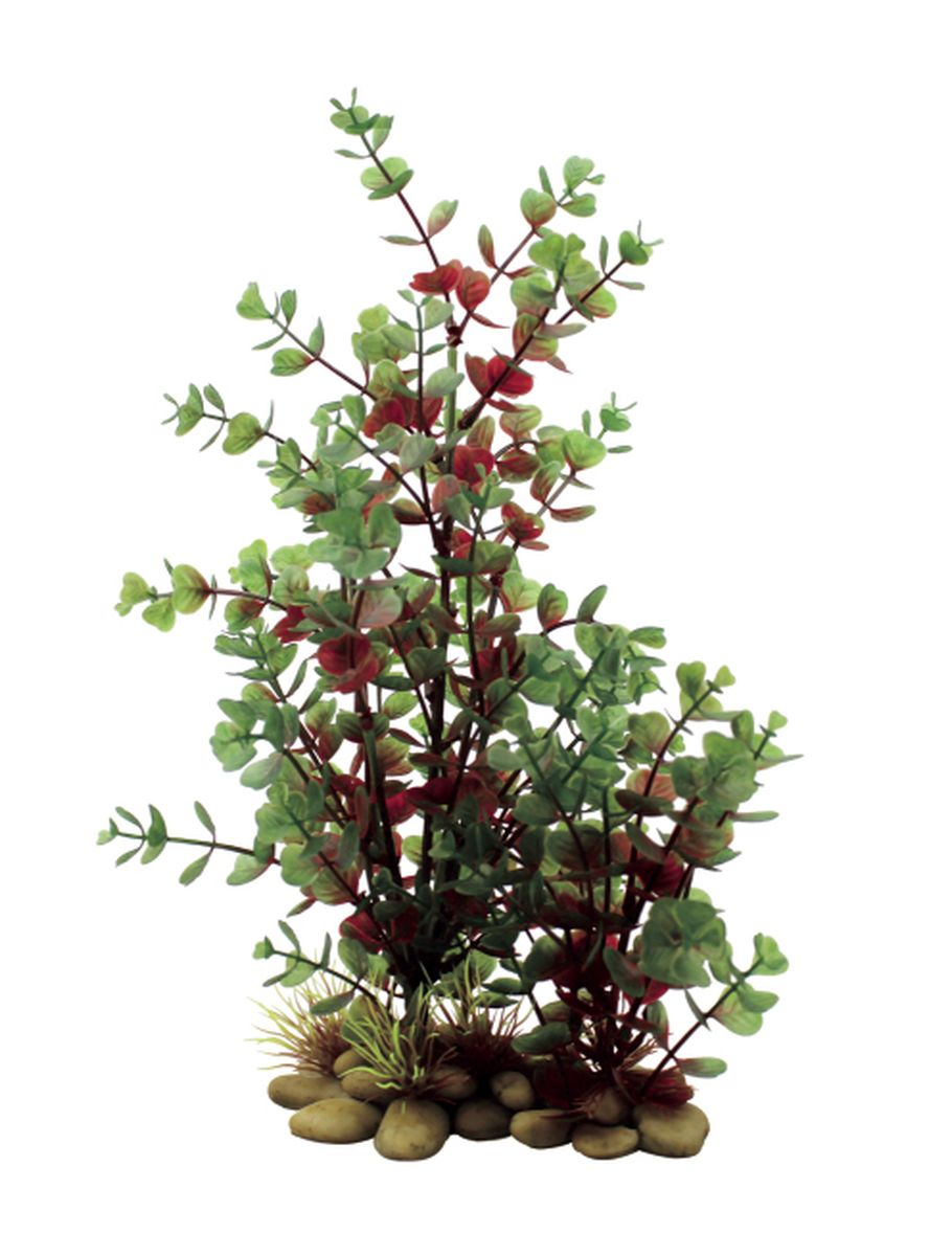 цена на Растение для аквариума ArtUniq Бакопа красно-зеленая, 30 см