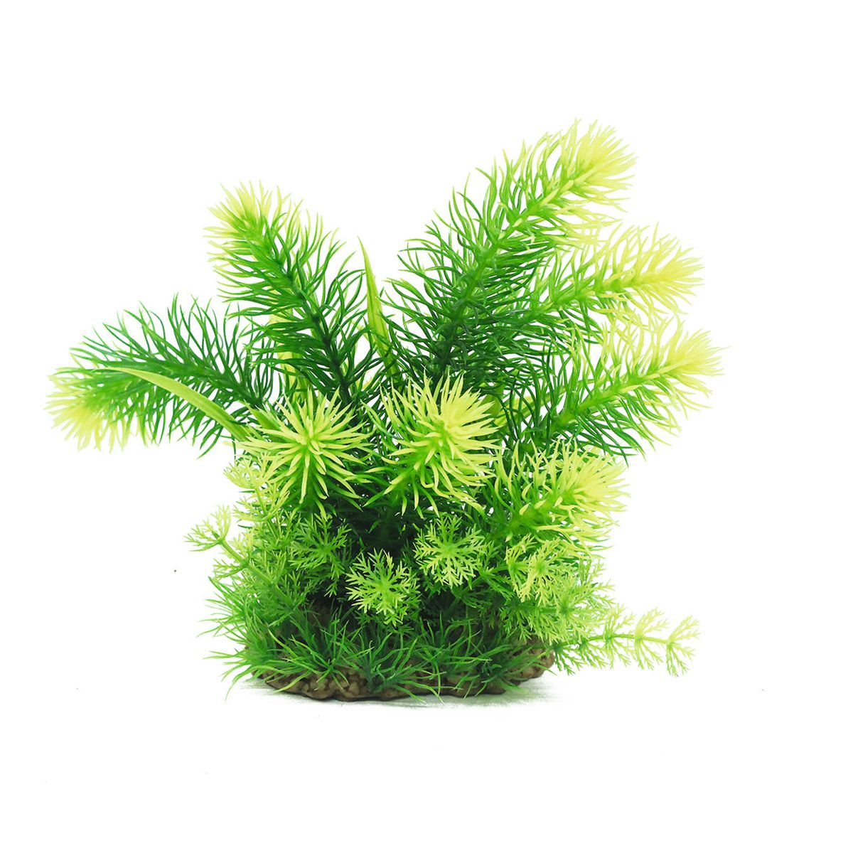 Растение для аквариума ArtUniq Погостемон эректус, высота 20 смART-1160513Композиция из искусственных растений ArtUniq превосходно украсит и оживит аквариум.Растения - это важная часть любой композиции, они помогут вдохнуть жизнь в ландшафт любого аквариума или террариума. А их сходствос природными порадует даже самых взыскательных ценителей.