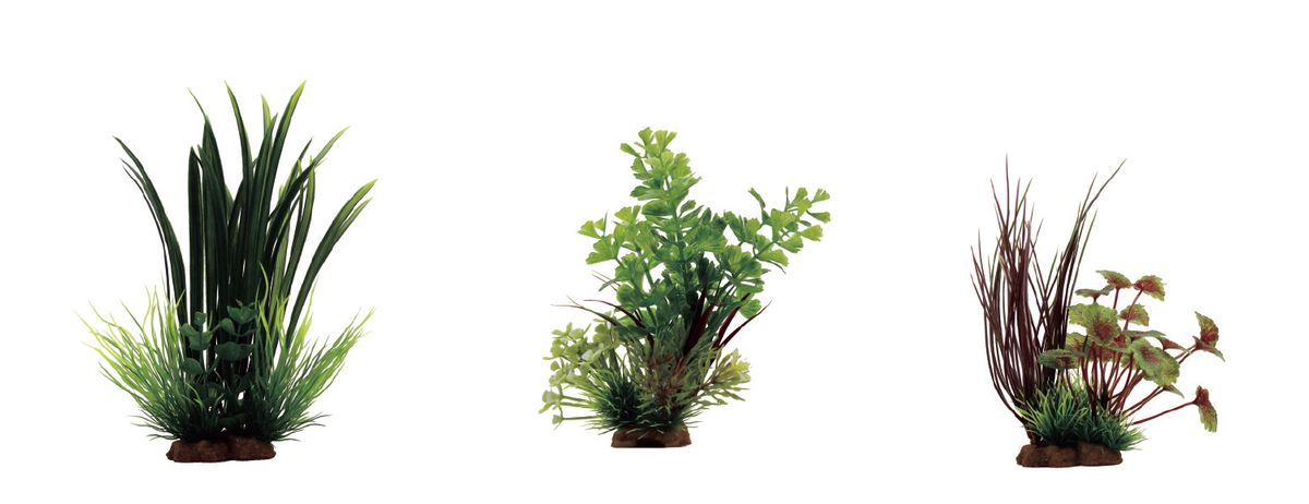 Растение для аквариума ArtUniq Офиопогон, кариота, щитолистник красно-зеленый, высота 10-20 см, 3 штART-1170106Растение для аквариума ArtUniq Офиопогон, кариота, щитолистник красно-зеленый, высота 10-20 см, 3 шт