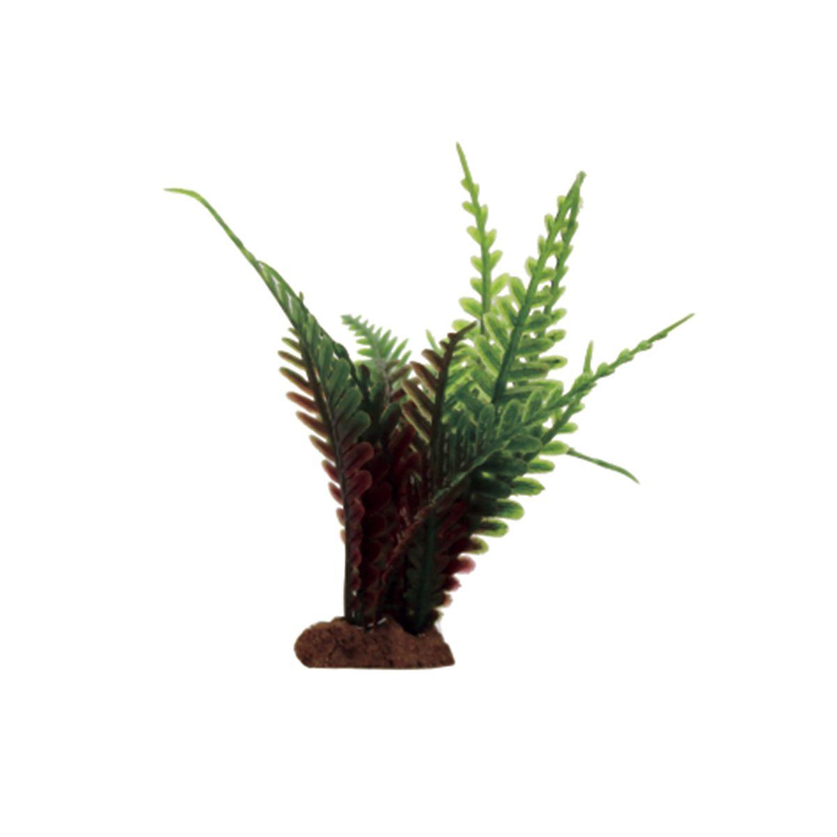 """Фото Растение для аквариума ArtUniq """"Папоротник красно-зеленый"""", высота 10 см, 6 шт"""