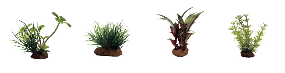 """Набор растений для аквариума ArtUniq """"Марсилия, лилеопсис, альтернантера, амбулия"""", высота 7-10 см, 4 шт"""