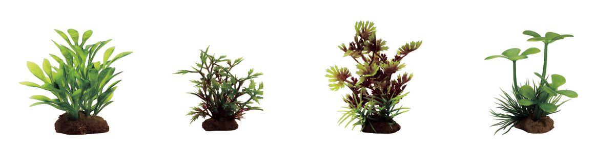 Растение для аквариума ArtUniq Микрантемум, гигрофила синнема, лютик водный оранжевый, марсилия, высота 7-10 см, 4 штART-1170610Растение для аквариума ArtUniq Микрантемум, гигрофила синнема, лютик водный оранжевый, марсилия, высота 7-10 см, 4 шт