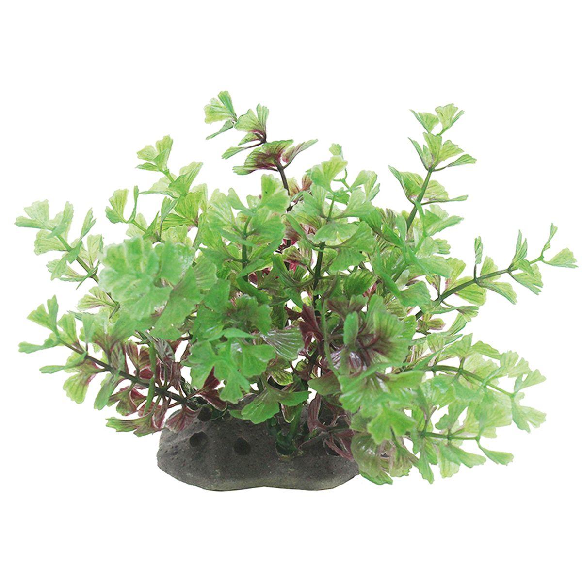 Растение для аквариума ArtUniq Кариота, высота 10-12 смART-1192113Растение для аквариума ArtUniq Кариота, высота 10-12 см