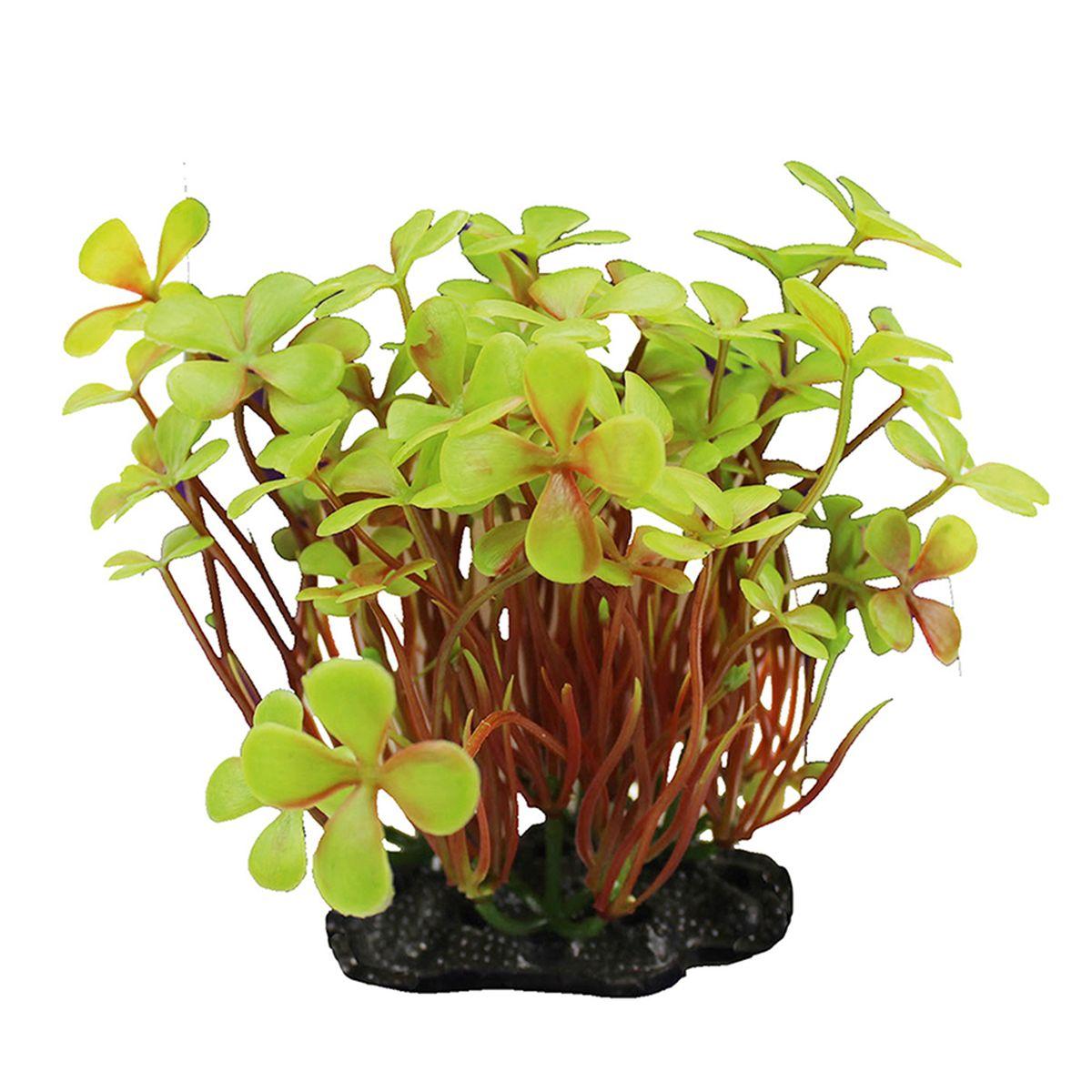Растение для аквариума ArtUniq Марсилия желтая, высота 10-12 смART-1192119Композиция из искусственных растений ArtUniq превосходно украсит и оживит аквариум.Растения - это важная часть любой композиции, они помогут вдохнуть жизнь в ландшафт любого аквариума или террариума. А их сходствос природными порадует даже самых взыскательных ценителей.