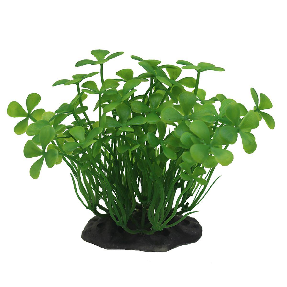 Растение для аквариума ArtUniq Марисилия зеленая, высота 10-12 смART-1192120Композиция из искусственных растений ArtUniq превосходно украсит и оживит аквариум.Растения - это важная часть любой композиции, они помогут вдохнуть жизнь в ландшафт любого аквариума или террариума. А их сходствос природными порадует даже самых взыскательных ценителей.