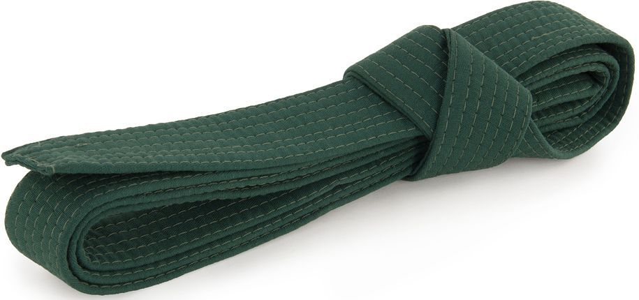 Пояс для кимоно Jabb, цвет: зеленый. JE-2783_339687. Размер 4 см х 280 смJE-2783_339687Пояс Jabb - универсальный пояс для кимоно. Пояс выполнен из плотного хлопкового материала с многорядной прострочкой.