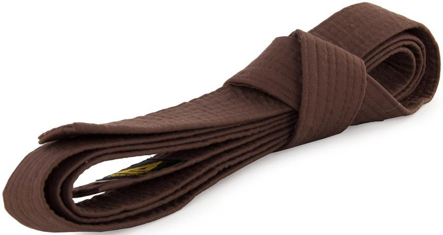 Пояс для кимоно Jabb, цвет: коричневый. JE-2783_339690. Размер 4 см х 300 см