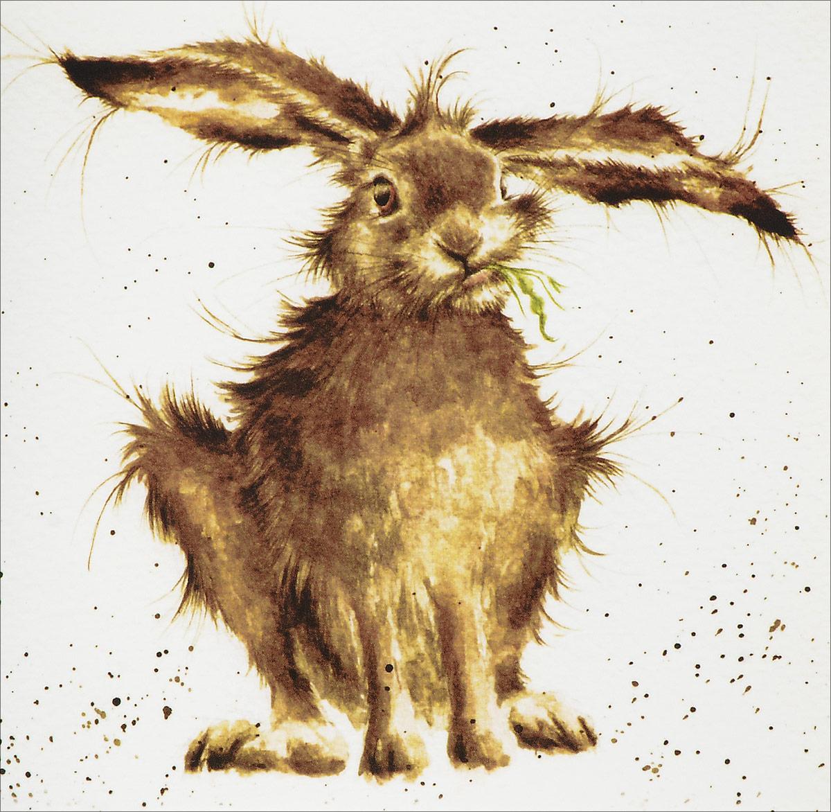 """Оригинальная поздравительная открытка Даринчи """" 26""""  выполнена из плотного картона. На лицевой стороне  расположено оригинальное изображение кролика.  Необычная открытка в винтажном стиле поможет вам  выразить чувства и передать теплые поздравления. Такая открытка станет великолепным дополнением к  подарку или почтовым посланием, которое, несомненно,  удивит получателя своим дизайном и подарит приятные  воспоминания."""