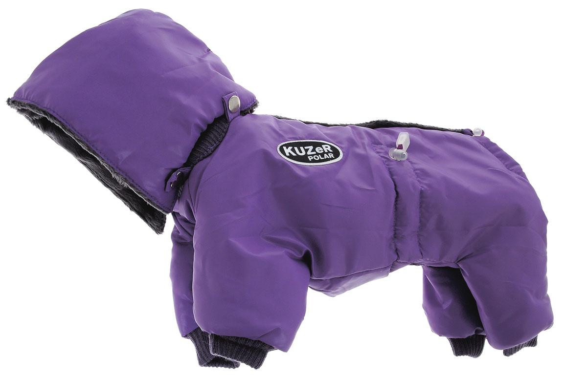 Комбинезон для собак Kuzer-Moda Полярник, зимний, унисекс, цвет: сиреневый, серый. Размер XSKZ001804Комбинезон для собак Kuzer-Moda Полярник отлично подойдет для прогулок в прохладную погоду.Комбинезон изготовлен из холлофайбера, защищающего от ветра и осадков, с подкладкой из искусственного меха, которая сохранит тепло и обеспечит отличный воздухообмен. Комбинезон застегивается на кнопки, благодаря чему его легко надевать и снимать. Ворот, низ рукавов и брючин оснащены резинками, которые мягко обхватывают шею и лапки, не позволяя просачиваться холодному воздуху. На пояснице имеются затягивающиеся шнурки, которые также не позволяют проникнуть холодному воздуху. Капюшон при необходимости можно отстегнутьБлагодаря такому комбинезону простуда не грозит вашему питомцу, и он не даст любимцу продрогнуть на прогулке.Одежда для собак: нужна ли она и как её выбрать. Статья OZON Гид