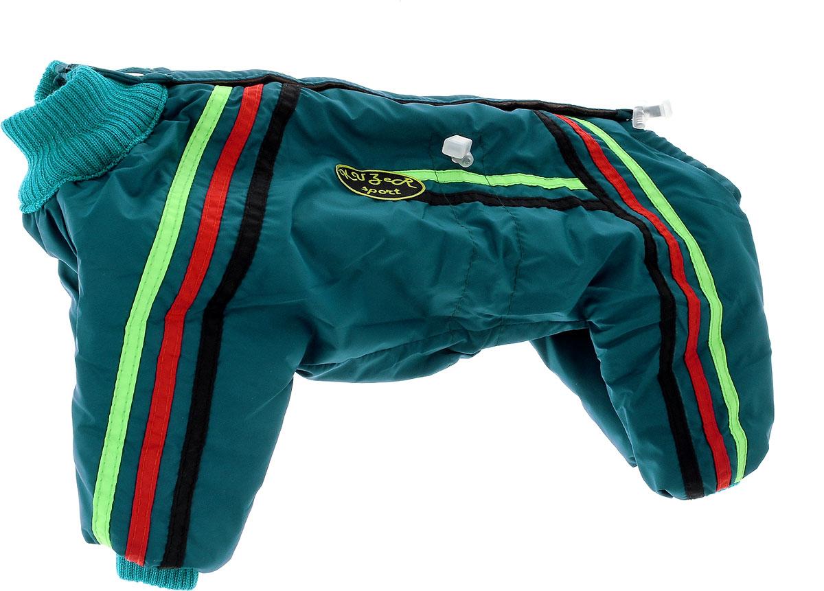Комбинезон для собак Kuzer-Moda Спринт, унисекс, утепленный, цвет: темно-бирюзовый. Размер MKZ001452Комбинезон для собак Kuzer-Moda  Спринт отлично подойдет для прогулок в прохладную погоду.Комбинезон изготовлен из прочной ткани, которая сохранит тепло и обеспечит отличный воздухообмен. Комбинезон застегивается на липучку и кнопки, благодаря чему его легко надевать и снимать. Ворот, низ рукавов и брючин оснащены трикотажными резинками, которые мягко обхватывают шею и лапки, не позволяя просачиваться холодному воздуху. На пояснице имеются затягивающиеся шнурки, которые также не позволяют проникнуть холодному воздуху.Благодаря такому комбинезону простуда не грозит вашему питомцу, и он не даст любимцу продрогнуть на прогулке. Длина по спинке 33 см.Одежда для собак: нужна ли она и как её выбрать. Статья OZON Гид