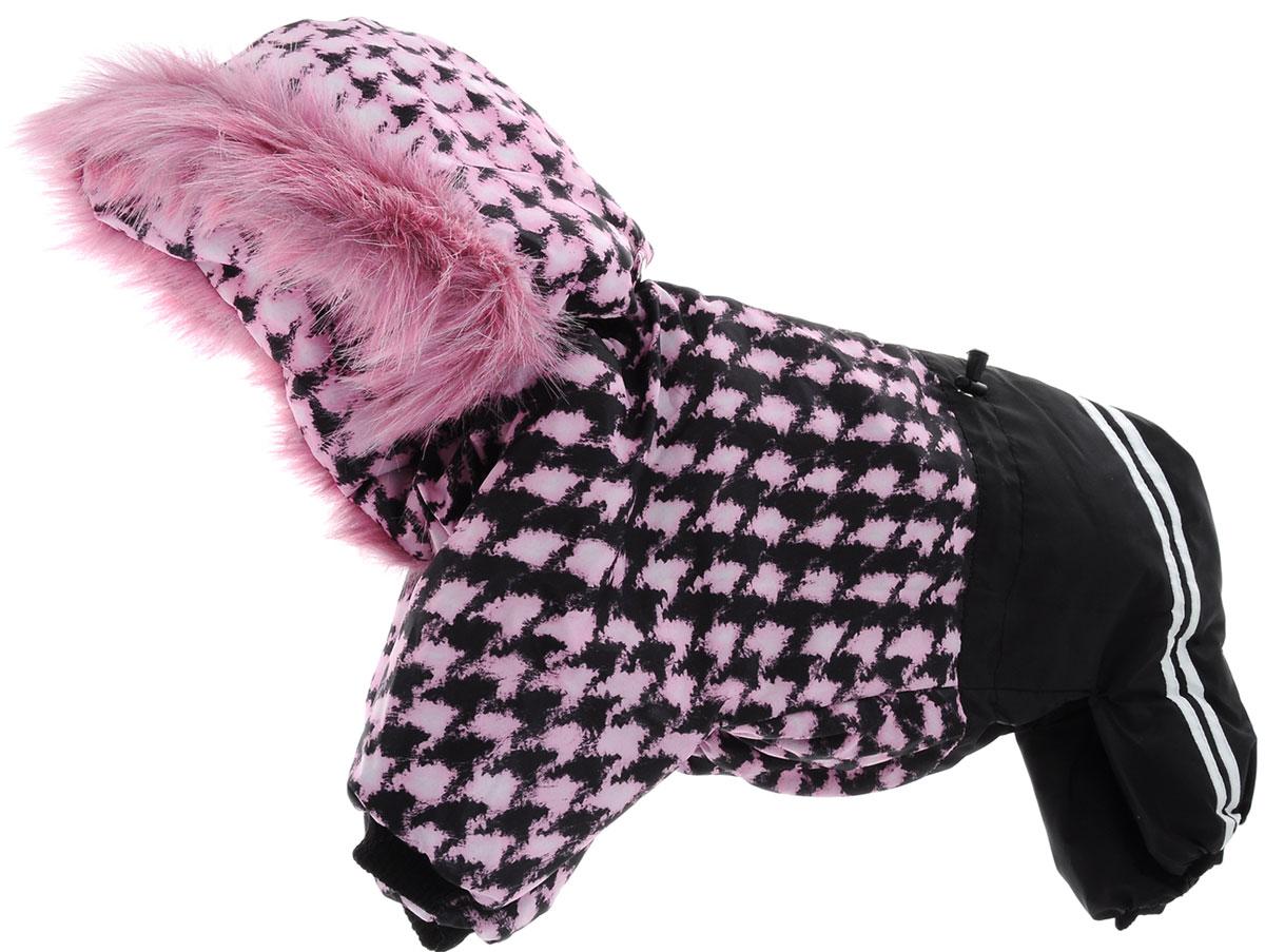 Комбинезон для собак Kuzer-Moda Куртка-брюки, зимний, унисекс, цвет: черный, розовый. Размер XLKZ002029Зимний комбинезон для собак Kuzer-Moda  Куртка-брюки отлично подойдет для прогулок в холодное время года.Комбинезон изготовлен из плащевки, защищающей от ветра и снега, с утеплителем из синтепона, который сохранит тепло даже в сильные морозы. Комбинезон с капюшоном застегивается на кнопки, благодаря чему его легко надевать и снимать. Капюшон пристегивается при помощи кнопок и дополнен искусственным мехом. Низ рукавов и брючин оснащен трикотажными манжетами, которые мягко обхватывают лапки, не позволяя просачиваться холодному воздуху. На пояснице комбинезон затягивается на шнурок-кулиску.Благодаря такому комбинезону простуда не грозит вашему питомцу. Длина по спинке 34 см.Одежда для собак: нужна ли она и как её выбрать. Статья OZON Гид