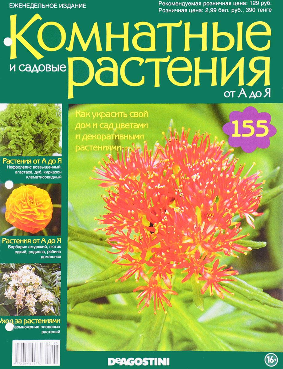 Журнал Комнатные и садовые растения. От А до Я №155 год до школы от а до я тетрадь по подготовке к школе