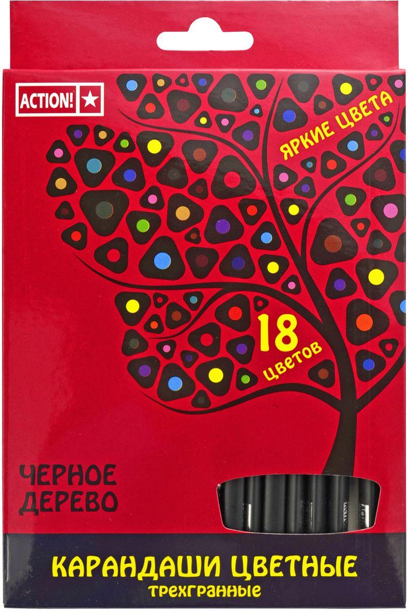 Action! Набор цветных карандашей Черное дерево 18 цветовACP505-18Цветные карандаши Action! откроют юным художникам новые горизонты для творчества, а также помогут отлично развить мелкую моторику рук, цветовое восприятие, фантазию и воображение. Трехгранный корпус изготовлен из черного дерева.Набор включает 18 карандашей насыщенных цветов.